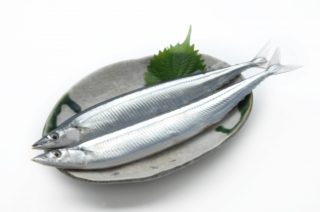 Sunma is Very popular fish in Japan